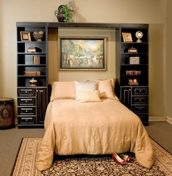 Cute Murphy Bed
