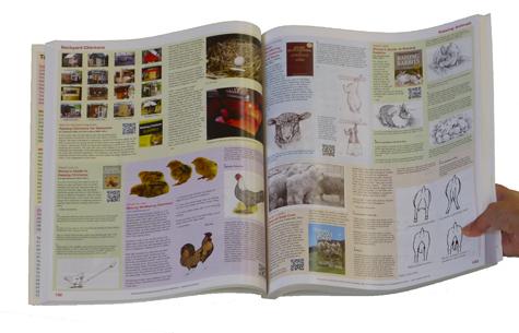 CTopenbook2